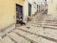 viaje de estudios a Lisboa