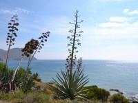 viaje de estudiantes almeria